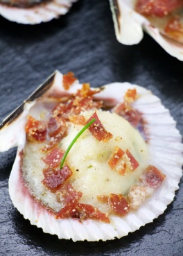 iberic variegated scallop